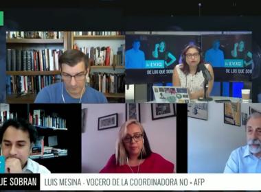 Luis Mesina Vocero NO+AFP